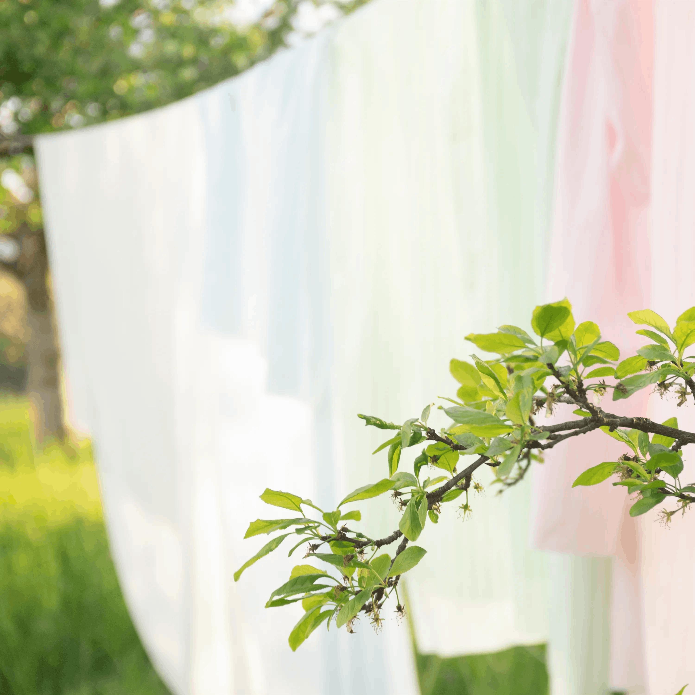 Baumwolle - Batist - Streifen blassgrün