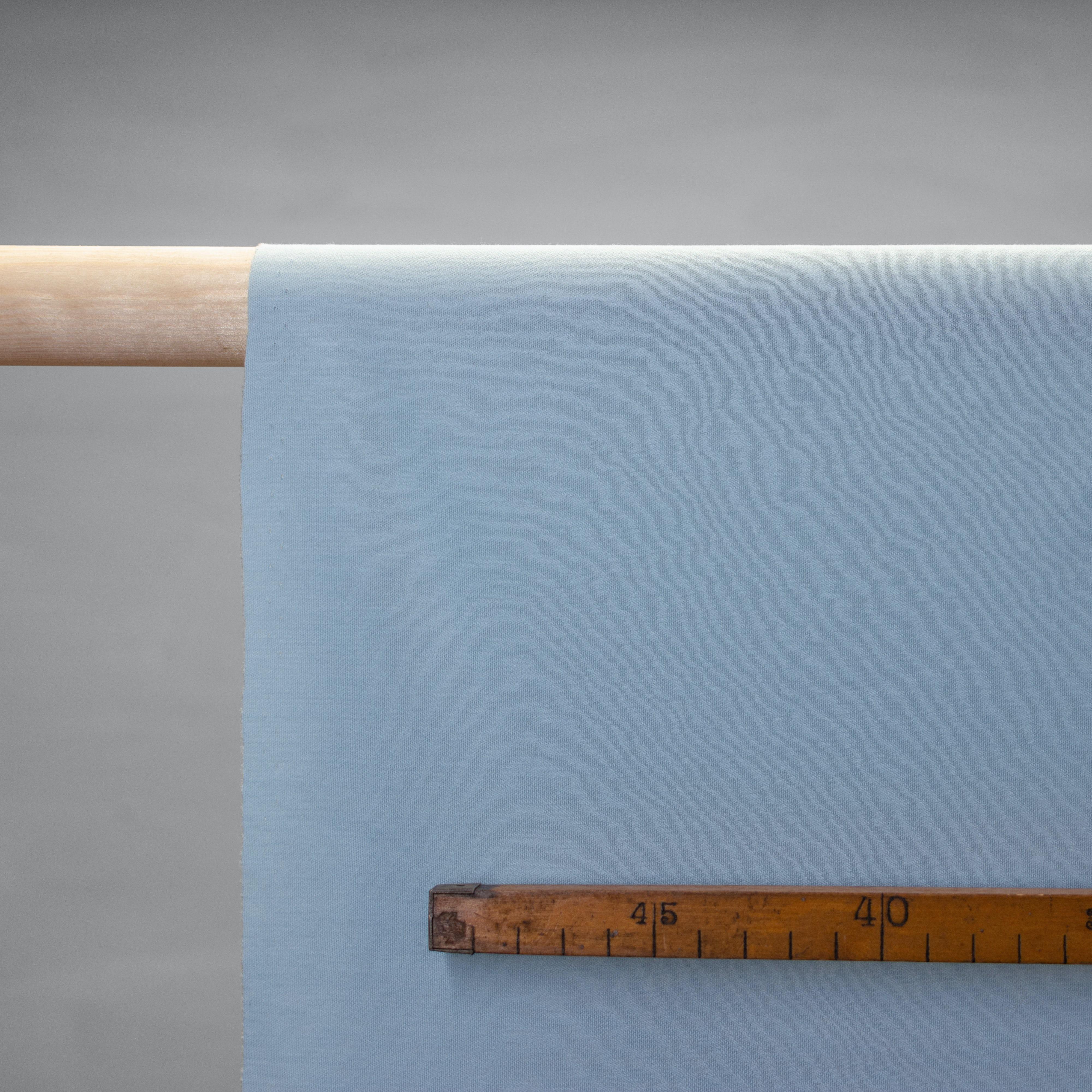 Baumwolle - Jersey leicht - taubenblau